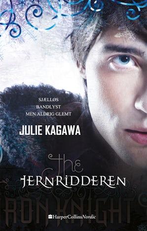 Jernridderen book image